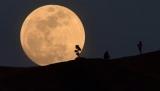 Vodafone планирует создать сеть мобильной связи на Луне