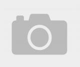 В китае показали выстрел «самый смертоносный базилика»